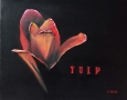 Bloemen drieluik - Tulp